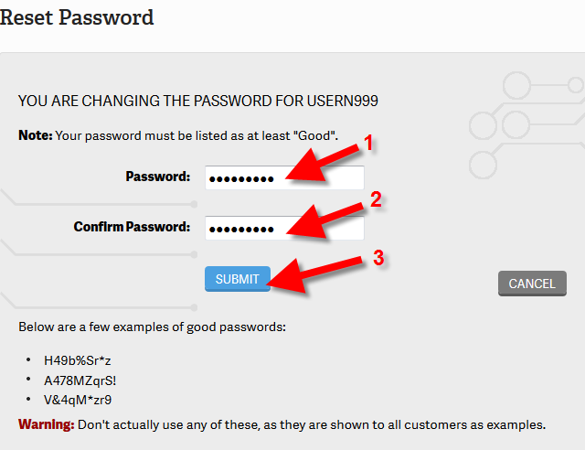 Changing your cPanel Password